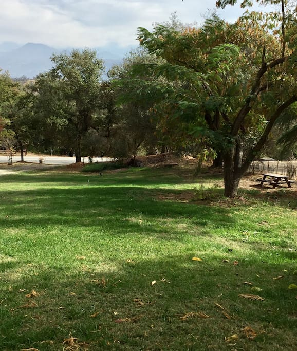Park like setting with volleyball net and four picnic tables throughout the large yard.