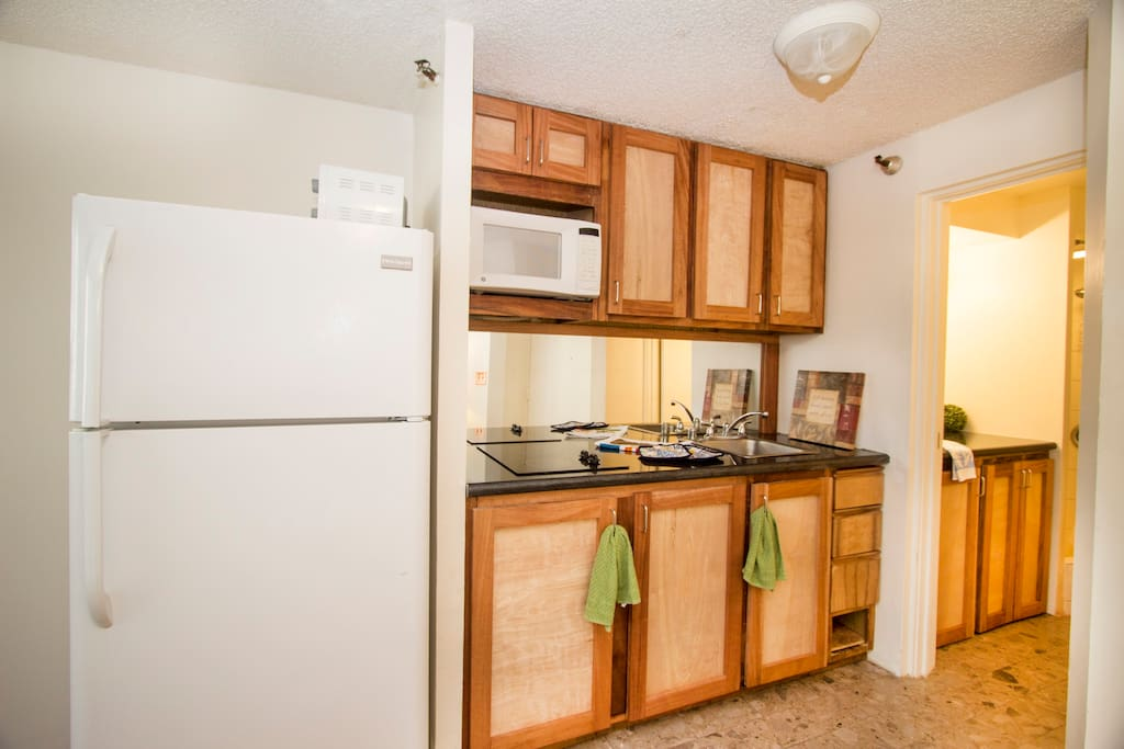 full kitchen and refrigerator