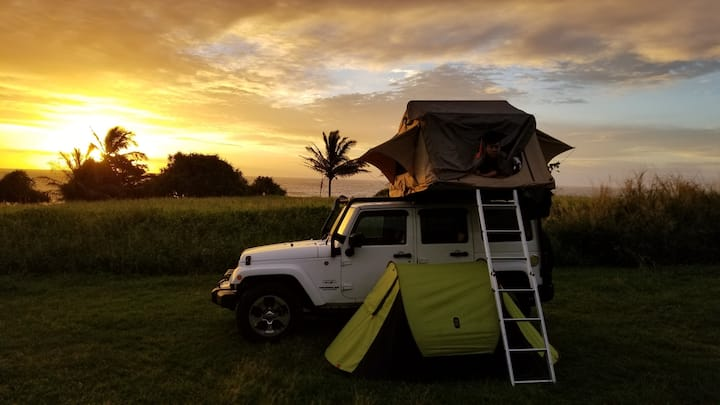 Suzie (2016 Jeep unlimited Sahara special edition)