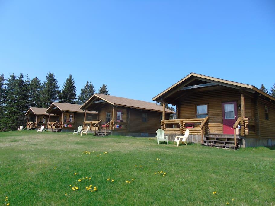 Cajun cedar log cottages single 3 cabins for rent in for Cajun cottages