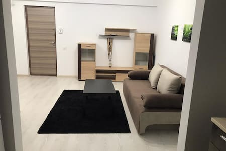 2 Rooms Apartment Titan Residence Sector 3