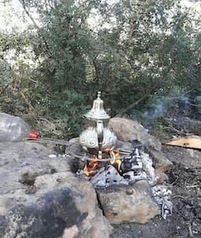 On fait le thé à la menthe dans le parc national à 5 km de la maison.