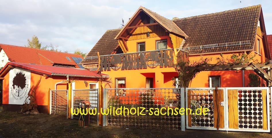 Wildholz Sachsen in der Dübener Heide