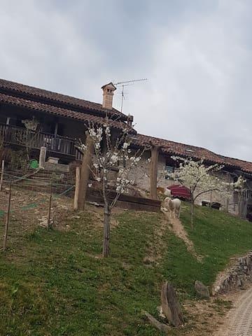 Rustico elegante tra le colline - Mel - Maison