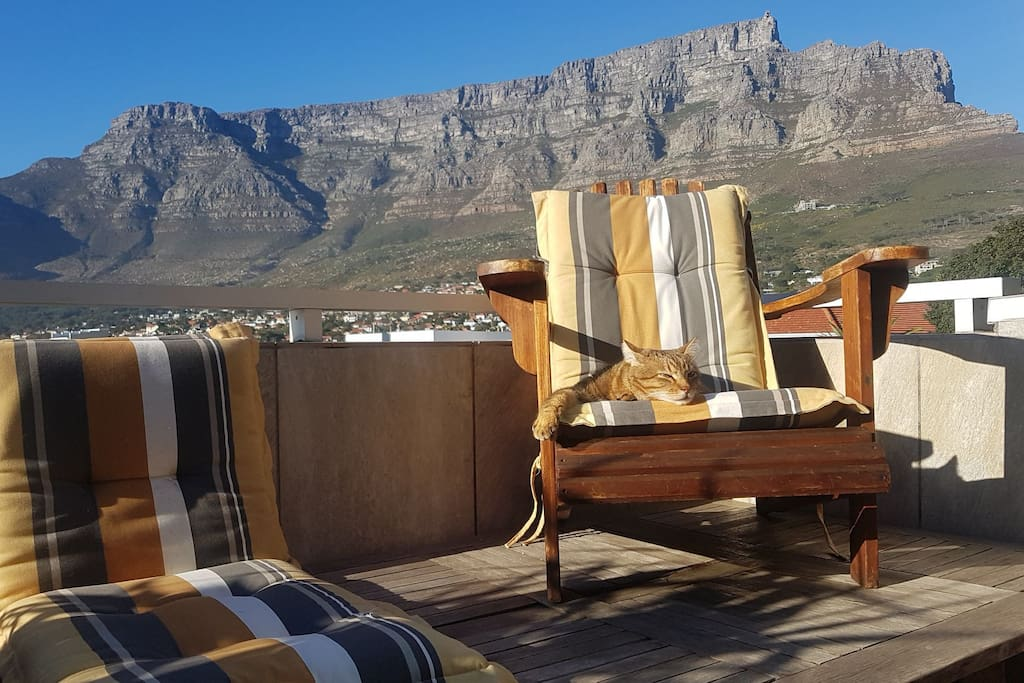 Patio with barbecue overlooking Table Mountain.