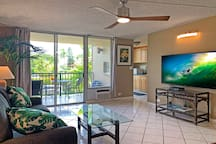 Sunny and bright living room features air conditioner and large flat-screen TV plus fold-out sofabed