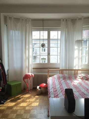 Beautiful private room in the heart of Zurich - Zürich - Appartement