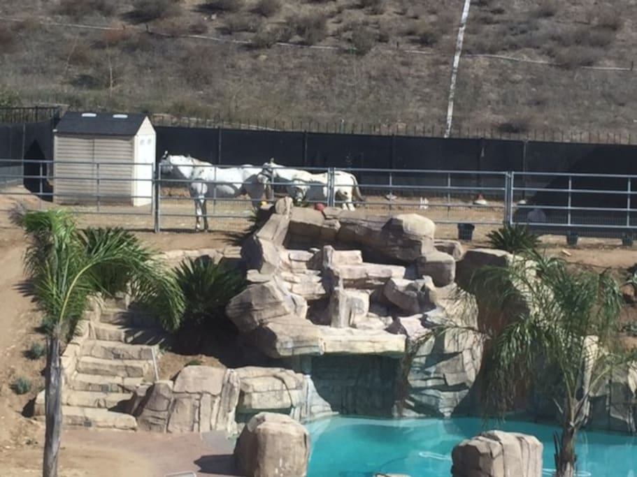 Rooms For Rent In Norco Ca