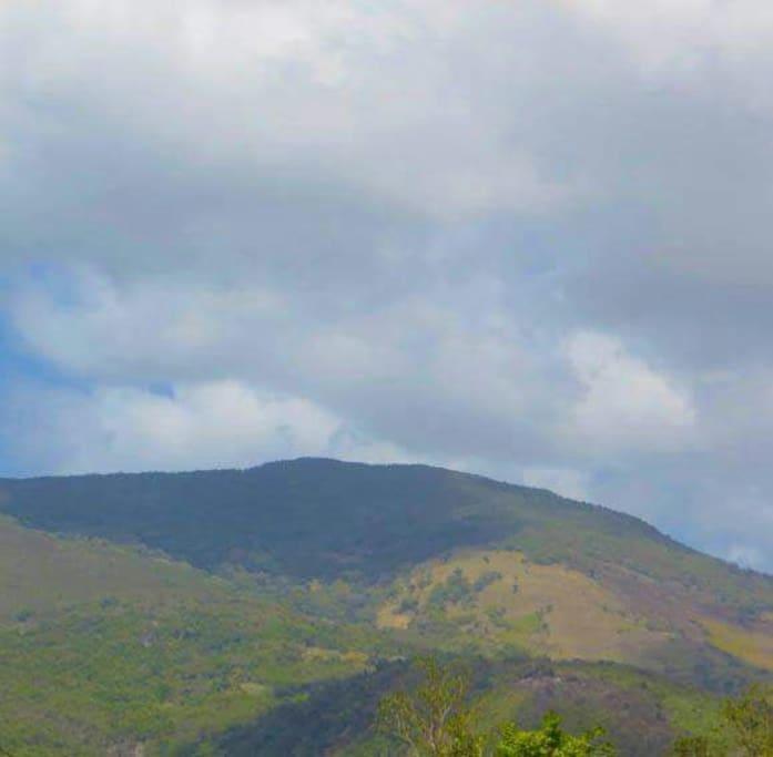 beautiful mountain side