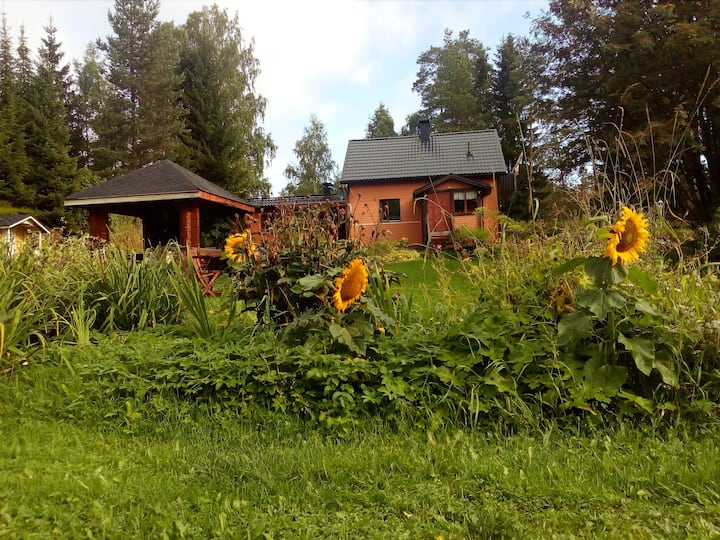 Finnish Wooden House.Near Jyvaskyla. B&B Rooms .