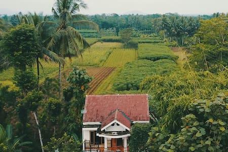 Jolan jalan homestay Borobudur home - Borobudur - Casa