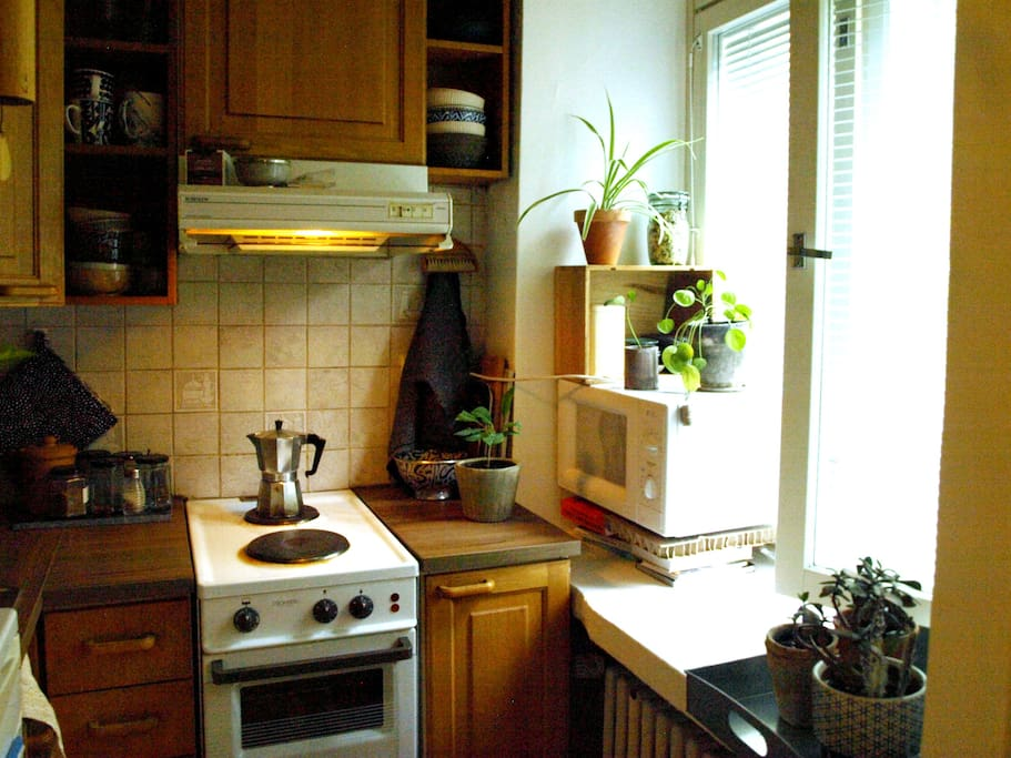 the small but fully equipped kitchen