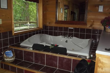PercheronParadise Romantic Cabin Near LaCrosse WI