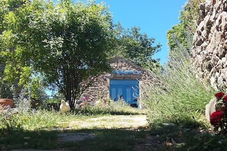 LA BUTINERIE, entre Cévennes et Margeride - Prévenchères - Ház