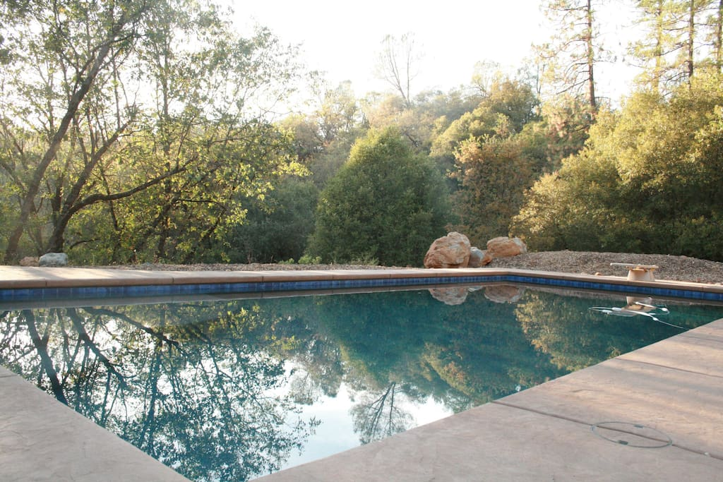 Beautiful large pool in natural private surroundings
