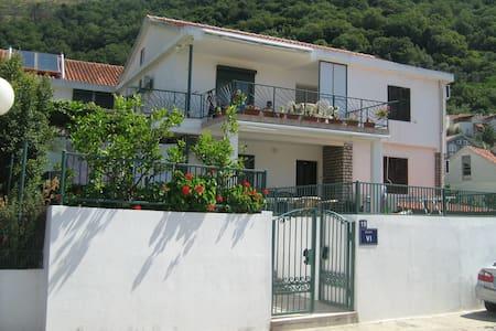 Apartment Venami 2 - Petrovac - Lägenhet