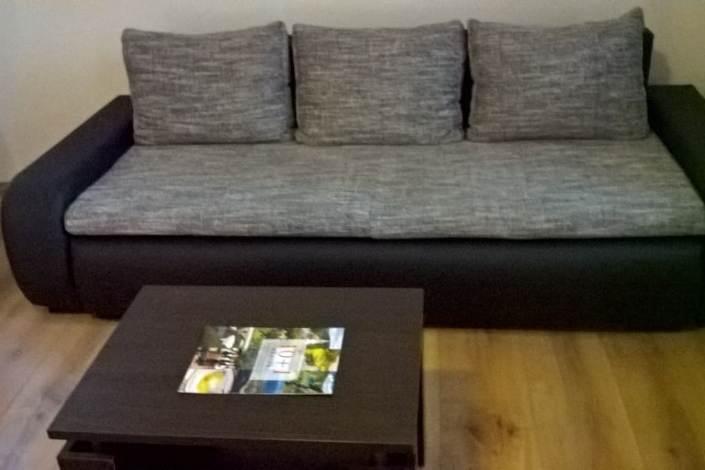 Sofa, coffee table, brochures/magazine