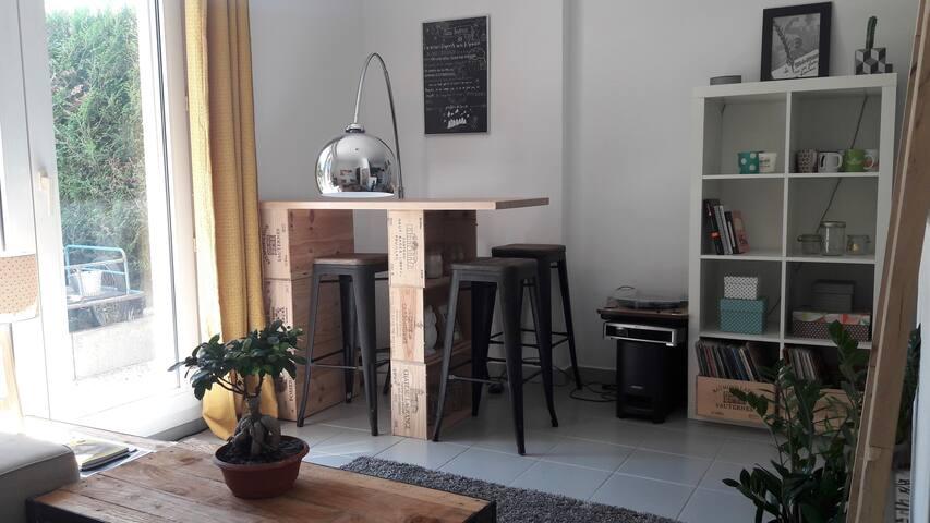 Bel appartement 40m2 avec jardin centre Annecy