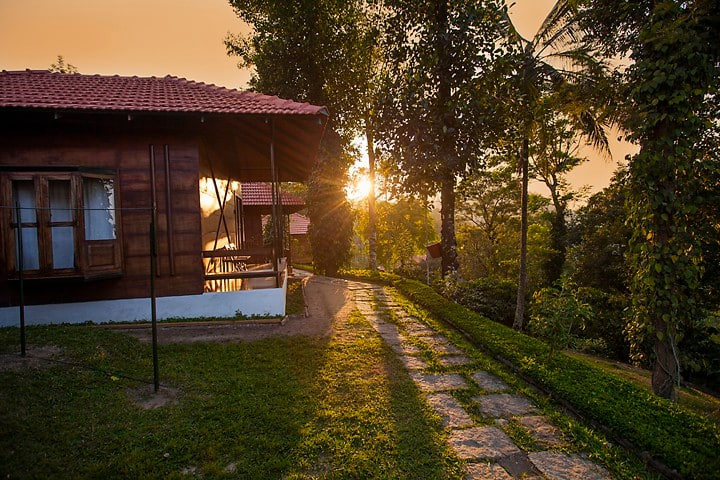 Marmalade Springs Wayanad - Wooden Cottages