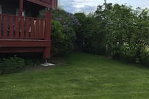 Backyard - Fully fenced