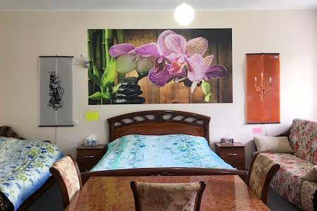 "Квартира-студия ""Орхидея"""