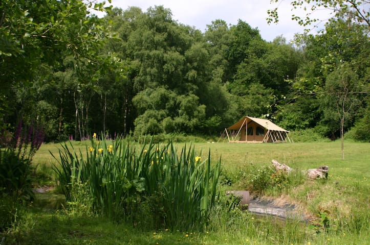 DriftAway Glamping - safari tent in meadow