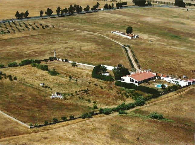 Alentejo Farm House Cinegetic Herdade Agachas1