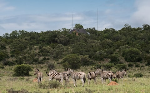 Rock Tree House - Bush retreat NE Pretoria