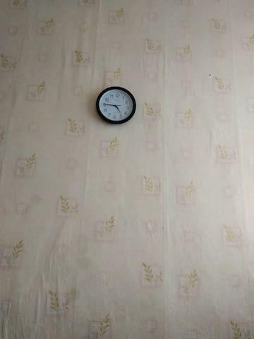 Комната в Колпино