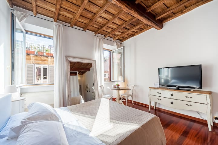Suite apartment near Spanish Steps! (Netflix)