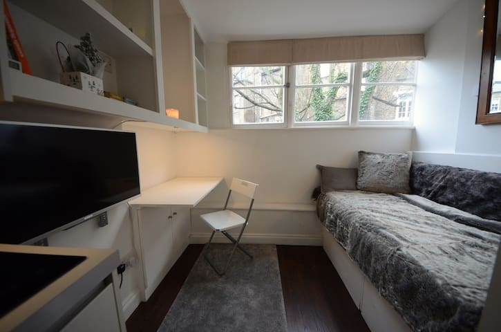 Compact studio in Central London, Pimlico SW1 ....