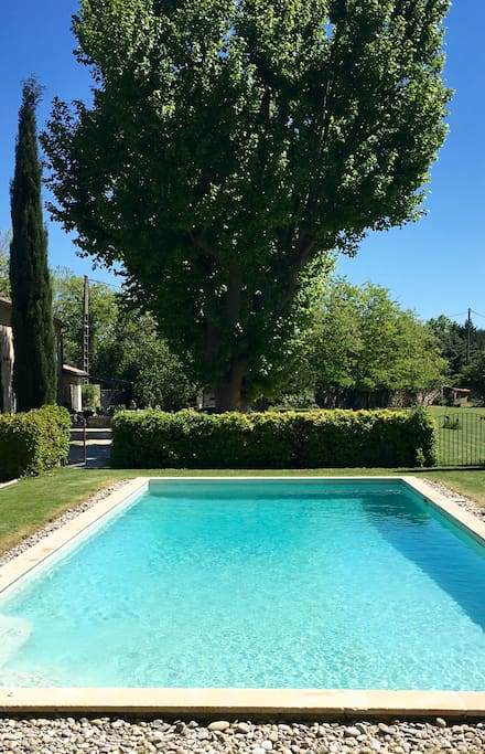 Large swimming pool, 12m x 5m, in provencal garden