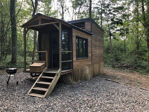 Tiny House in het Hart van het Bos