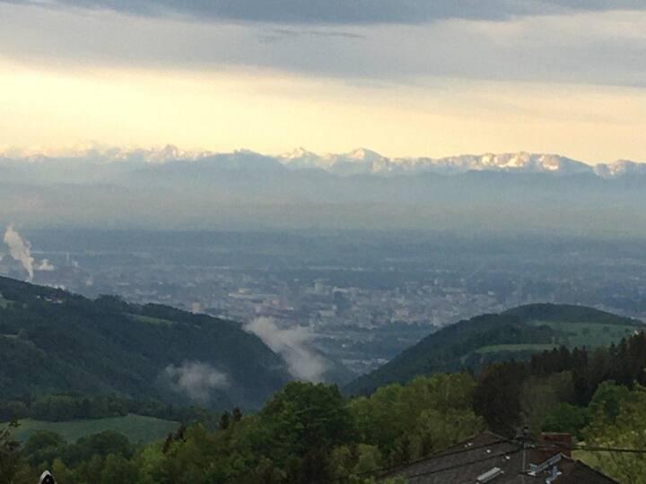 Blick auf die Alpen, sonnige Lage am Waldrand
