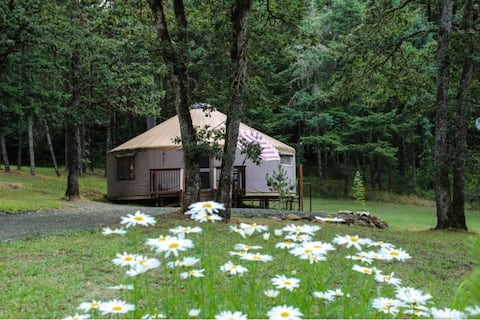 "Wine Country Retreat at ""The Yurt at Shady Oaks"""