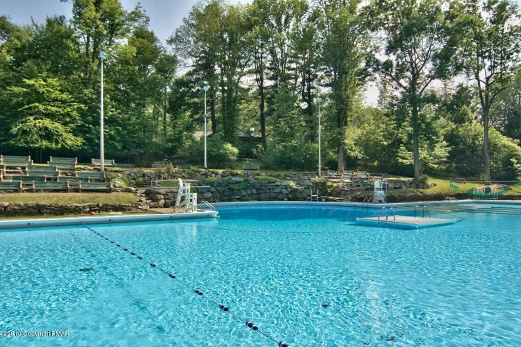 Community Olympic Size Pool