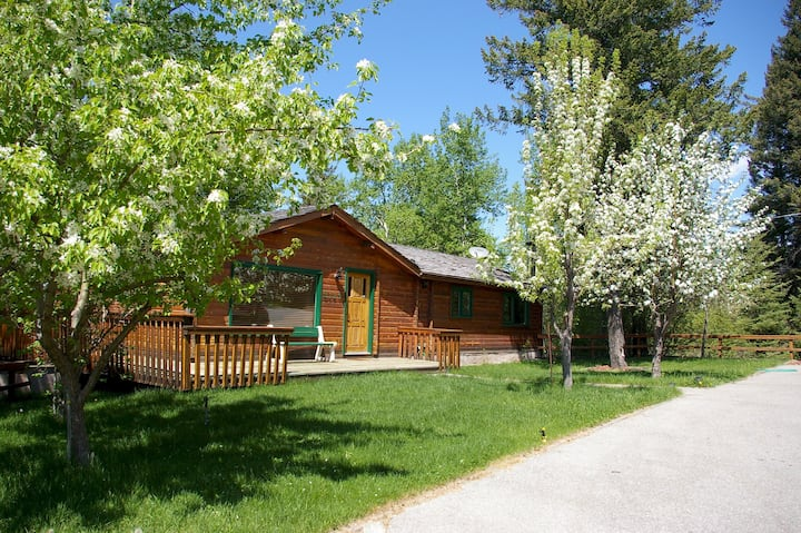 Cozy Creekside 3 Bedroom Cabin- PET FRIENDLY
