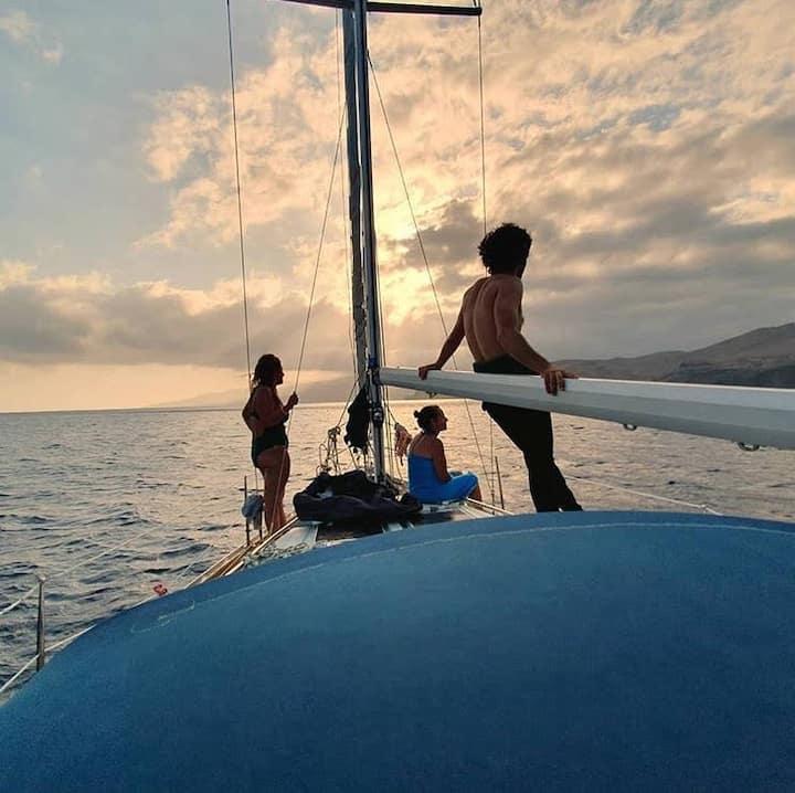 Madeira Island ADVENTURE / DISCOVER