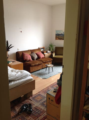Sunny, cosy room in young flat sharing community - Frankfurt am Main