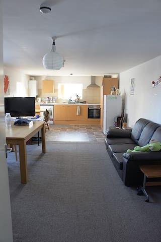 a bright, clean and big double room only for girl. - Newcastle upon Tyne - Apartemen