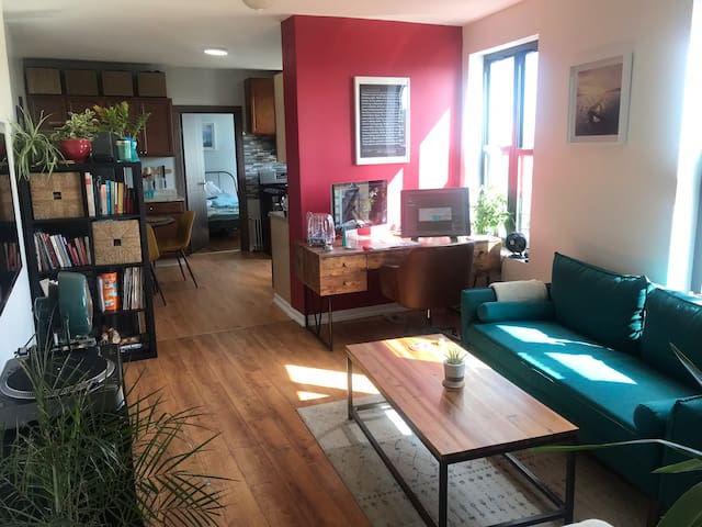 Beautiful Apartment in the South Bronx