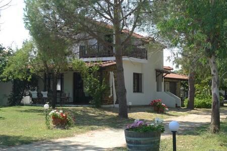 Traumhaftes Ferienhaus in Sikia / Chalkidiki - Sikia