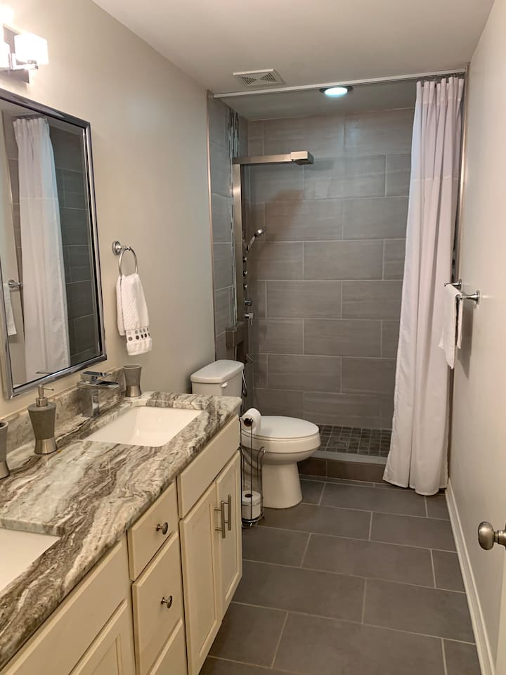 Hall bath with walk in tile shower, akdy shower system, trax shower system, granite countertops, rainfall faucets.