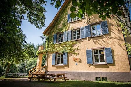 Villa Louisental  - schöne Gruppenunterkunft