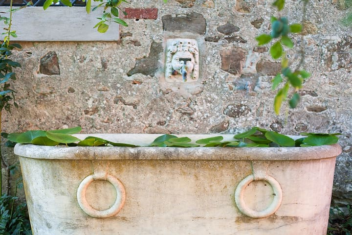 Il Limone - Florence - Appartement