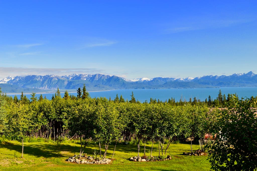 Enjoy stunning views of the mountains, glaciers and Kachemak Bay.