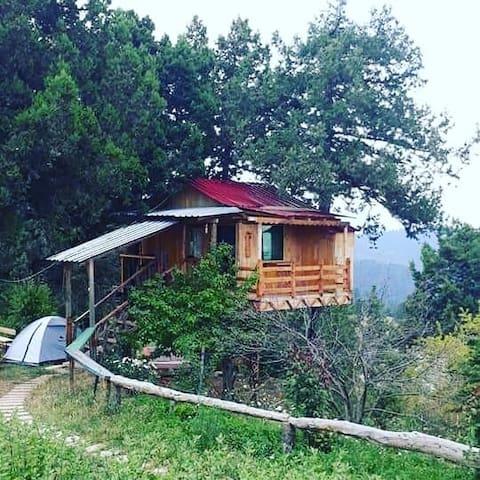 Toroslarda Dağ evi, Ağaç ev, Orman evi, Doğa evi