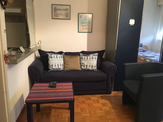 Mini appartement lumineux, fonctionnel à Genève