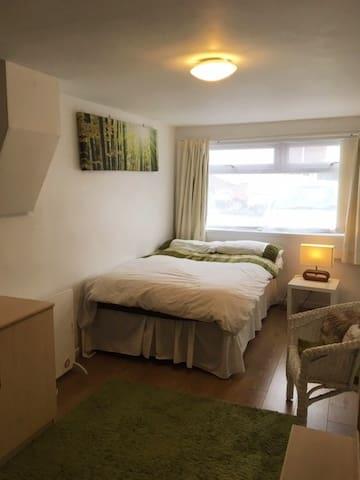 Cardiff apartment sleeps 3 free parking/WIFI