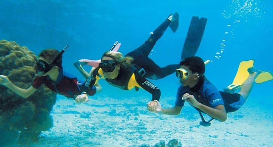 Buceo en la Isla de Tabarca - Snorkel island of tabarca